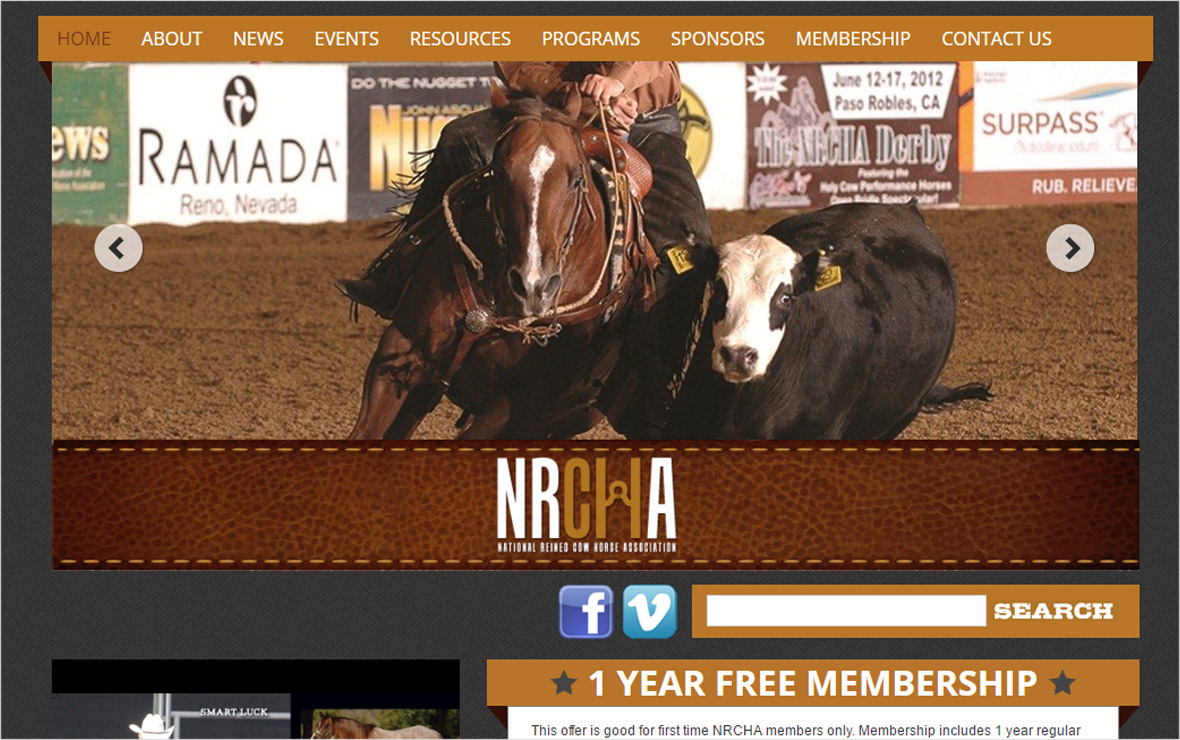 National Reined Cowhorse Associaton